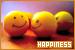 Happiness: