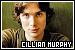 Murphy, Cillian: