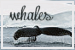 Whales: